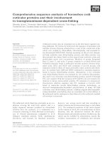 Báo cáo khoa học: Comprehensive sequence analysis of horseshoe crab cuticular proteins and their involvement in transglutaminase-dependent cross-linking potx