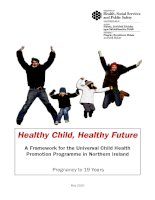Healthy Child, Healthy Future: A Framework for the Universal Child Health Promotion Programme in Northern Ireland doc