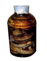 Tác dụng chữa bệnh của rắn rất tốt cho sức khỏe doc