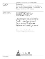Challenges in Attaining Audit Readiness and Improving Business Processes and Systems docx