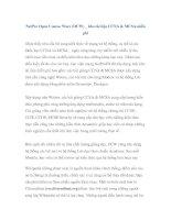 NetPro Open Course Ware (OCW) _ kho tài liệu CCNA & MCSA miễn phí pdf
