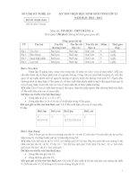 Đề thi học sinh giỏi tỉnh Nghệ An năm 2013 môn tin 12 bảng A pot
