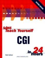 Sams Teach Yourself CGI in 24 Hours, 2nd Edition ppt