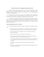 TIPS ON POULTRY RAISING INTRODUCTION ppt