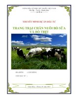 Dự án trang trại chăn nuôi bò sữa bò thịt  Công ty CP Tư Vấn Đầu Tư Thảo Nguyên Xanh
