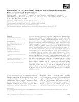 Báo cáo khoa học: Inhibition of recombinant human maltase glucoamylase by salacinol and derivatives pdf