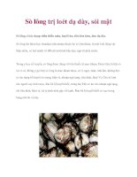 Sò lông trị loét dạ dày, sỏi mật ppt