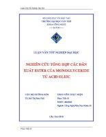 nghiên cứu tổng hợp các dẫn xuất ester của monoglyceride từ acid oleic
