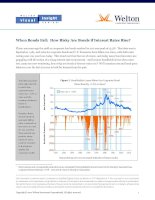 When Bonds Fall: How Risky Are Bonds if Interest Rates Rise? pptx