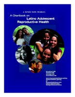 A FUTURE WITH PROMISE: A Chartbook on Latino Adolescent Reproductive Health pdf