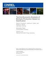 Techno-Economic Analysis of Biofuels Production Based on Gasification docx