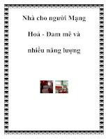 Nhà cho người Mạng Hoả - Đam mê và nhiều năng lượng pot