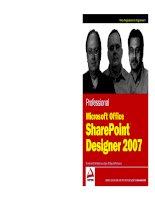Professional Microsoft Office SharePoint Designer 2007 pdf