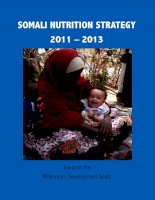 SOMALI NUTRITION STRATEGY 2011 – 2013: Towards the Millennium Development Goals pdf