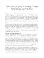 Triển khai giải pháp E-learning ở Ngân hàng thương mại Việt Nam pptx