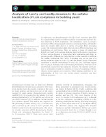 Báo cáo khoa học: Analysis of Lsm1p and Lsm8p domains in the cellular localization of Lsm complexes in budding yeast ppt