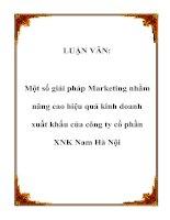 LUẬN VĂN: Một số giải pháp Marketing nhằm nâng cao hiệu quả kinh doanh xuất khẩu của công ty cổ phần XNK Nam Hà Nội pot