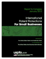 Report to Congress January 2012: International Patent Protections For Small Businesses pot