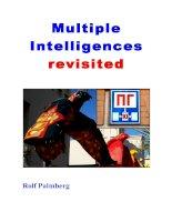 Multiple Intelligences revisited pot