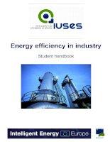 Energy efficiency in industry Student handbook doc