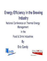 Energy Efficiency in the Brewing Industry National Conference on Thermal Energy Management in the Food & Drink Industries pptx