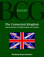 THE CONNECTED KINGDOM - HOW THE INTERNET IS TRANSFORMING THE U.K.ECONOMY pot