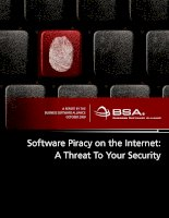 Software Piracy on the Internet: A Threat To Your Security pot