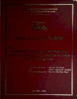 Nghiên cứu chiến lược phát triển của công ty cổ phần chuyển mạch tài chính quốc gia Việt Nam