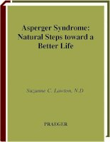 Asperger Syndrome Natural Steps toward a Better Life pot