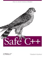 Safe C++: How to avoid common mistakes pdf