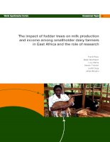 The impact of fodder trees on milk production and income among smallholder dairy farmers in East Africa and the role of research ppt