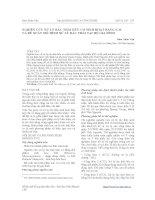 NGHIÊN CỨU XỬ LÝ RÁC THẢI HỮU CƠ SINH HOẠT BẰNG E.M VÀ ĐỀ XUẤT MÔ HÌNH XỬ LÝ RÁC THẢI TẠI HỘ GIA ĐÌNH pdf