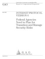 INTERNET PROTOCOL VERSION 6: Federal Agencies Need to Plan for Transition and Manage Security Risks pot