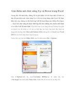 Gán thêm nút chức năng Up và Down trong Excel potx