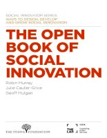 The Open Book of Social Innovation Social Innovator series - ways to design, develop and grow social innovation ppt