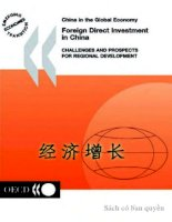 foreign direct investment in china electronic resource docx