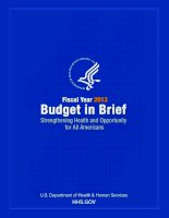 FISCAL YEAR 2013 BUDGET IN BRIEF STRENGTHENING HEALTH AND OPPORTUNITY FOR ALL AMERICANS pptx
