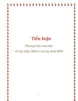 Tiểu luận: Phương thức mua bán và sáp nhập (M&A) của tập đoàn IBM pdf