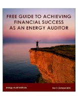FREE GUIDE TO ACHIEVING FINANCIAL SUCCESS AS AN ENERGY AUDITOR pptx