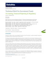TECHNICAL BRIEF FOR INVESTMENT FUNDS: ACCOUNTING, FINANCIAL REPORTING & REGULATORY ( VOLUME 4) ppt