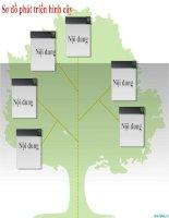 sơ đồ phát triển hình cây cho powerpoint, tree diagram