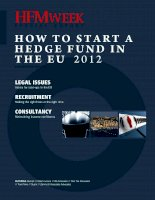 HOW TO START A HEDGE FUND IN THE EU 2012 ppt