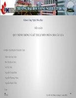 QUY TRÌNH TRỒNG VÀ KỸ THUẬT BÓN PHÂN CHO CÂY LÚA pdf