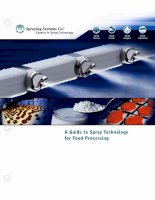 A Guide to Spray Technology for Food Processing pptx