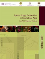 Opium Poppy Cultivation in South East Asia pdf