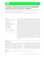 Báo cáo khoa học: Catalytic mechanism of the primary human prostaglandin F2asynthase, aldo-keto reductase 1B1 – prostaglandin D2 synthase activity in the absence of NADP(H) pptx