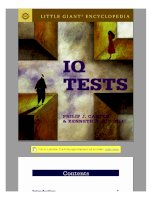 IQ Test (little giant) doc