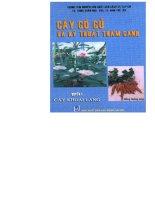 cây có củ và kỹ thuật thâm canh-quyển 1