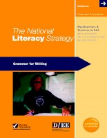 The National Literacy Strategy Grammar for Writing pot