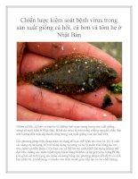 Chiến lược kiểm soát bệnh virus trong sản xuất giống cá hồi, cá bơn và tôm he ở Nhật Bản pdf
